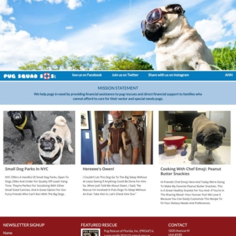 Pug Squad: We Help Pugs In Need